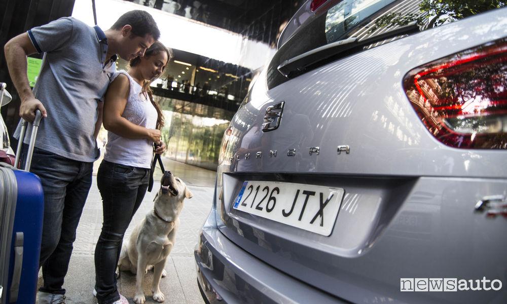 Viaggiare in auto con il cane, consigli