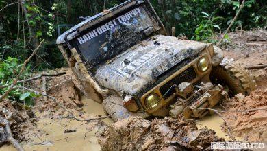Photo of Le foto del Rainforest Trophy
