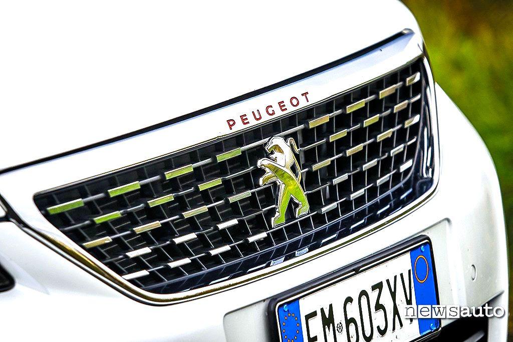 Mascherina anteriore Peugeot 308 GT BlueHDi