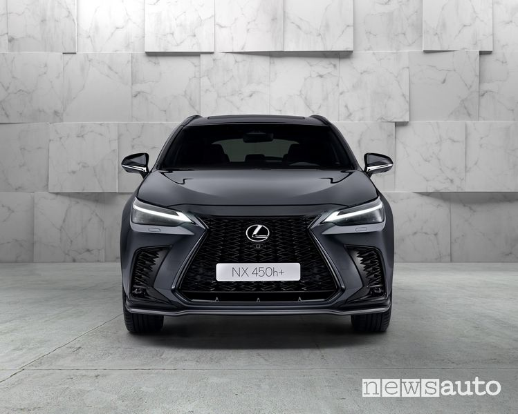 Griglia anteriore nuovo Lexus NX 450h+